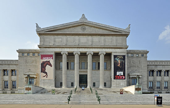 Field Museum of Natural History in Chicago