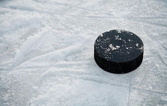 The Chicago Blackhawks - National Hockey League Team