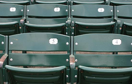 The Chicago Cubs - Major League Baseball (MLB) Team