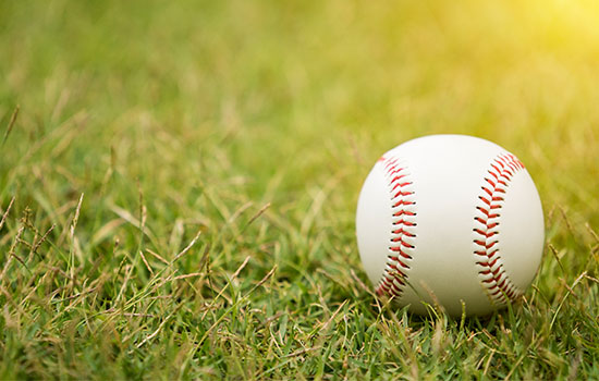 The Chicago White Sox - Major League Baseball (MLB) Team